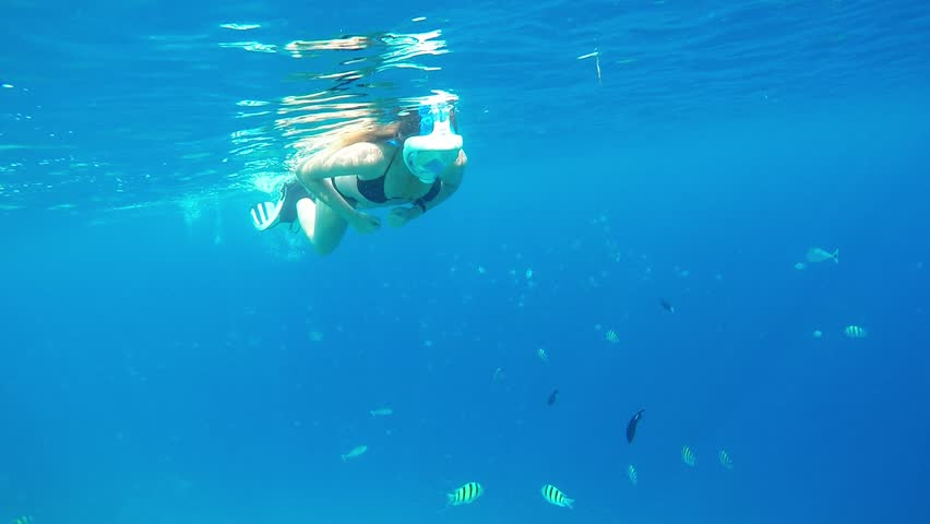 UNDERWATER CLOSE UP: Happy young woman on her exotic summer vacations in paradise swimming and snorkeling in crystal clear lagoon with saergeant major fish. Full face snorkel