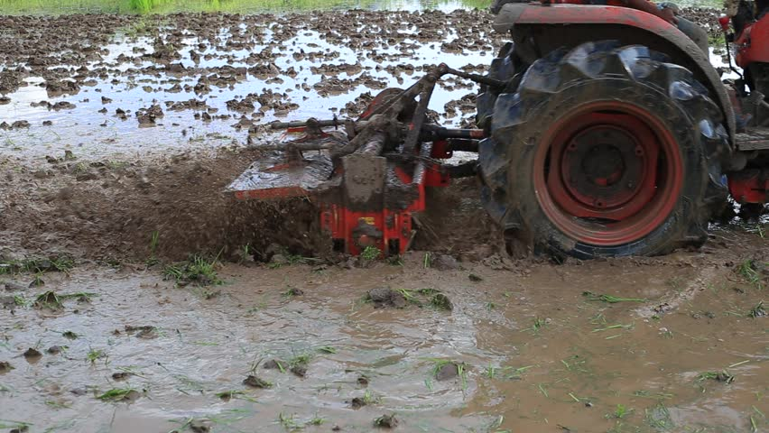 Rice paddy plowing Tiller with tractor , Farmers plowed soil in the rainy season