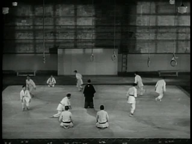 Wide shot martial arts training class
