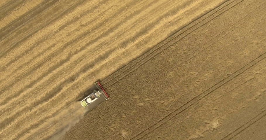 Aerial drone shot of a combine harvester working in a field #18309697