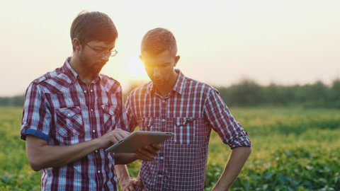 Two young farmer working in a field at sunset. enjoy tablet