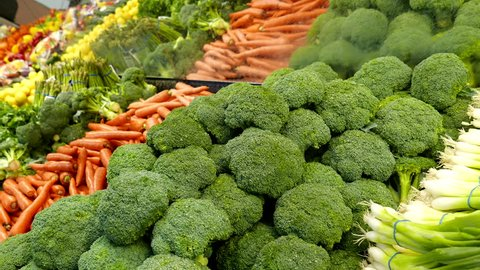 Woman selecting broccoli in grocery store produce department with 4k resolution