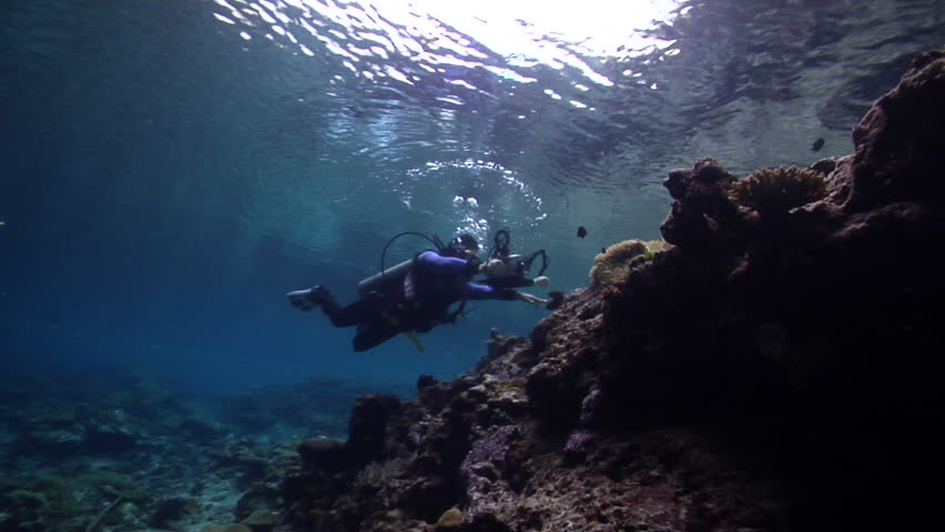 Videographer taking images on very shallow reef and surface in Solomon Islands, HD, UP26975   Shutterstock HD Video #18427207
