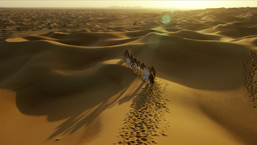 Aerial drone of Middle Eastern male camel owners in desert convoy | Shutterstock HD Video #18614477