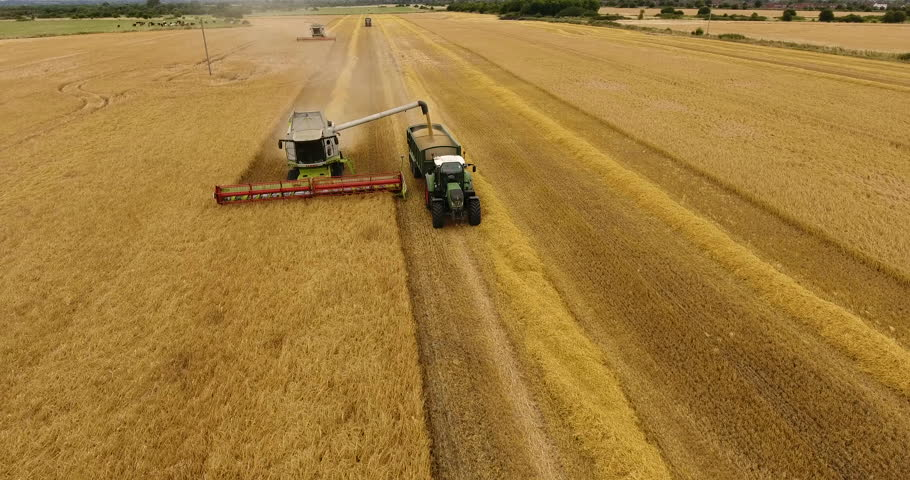 Aerial view flying over the top of a combine harvester and tractor and trailer as it empties the corn in a field on a summers day