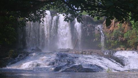 Partial view of an impressive waterfall in the background. Framed by a tropical tree.