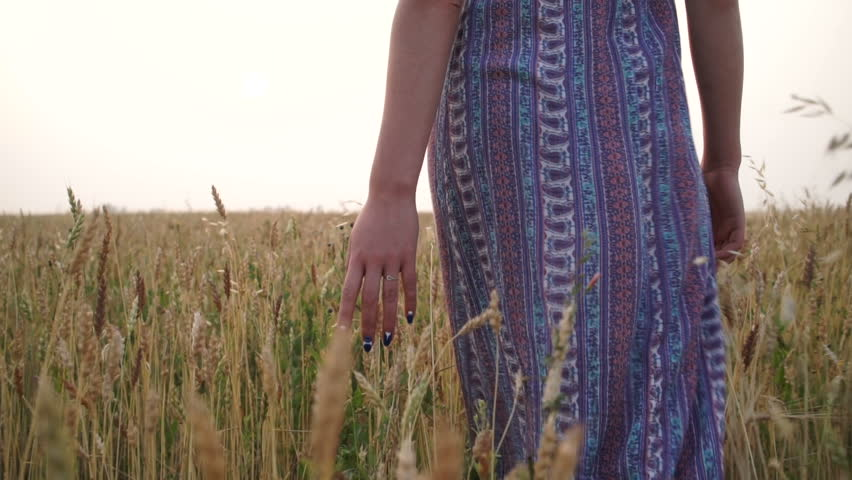 Girl at sunset in a field | Shutterstock HD Video #19018207
