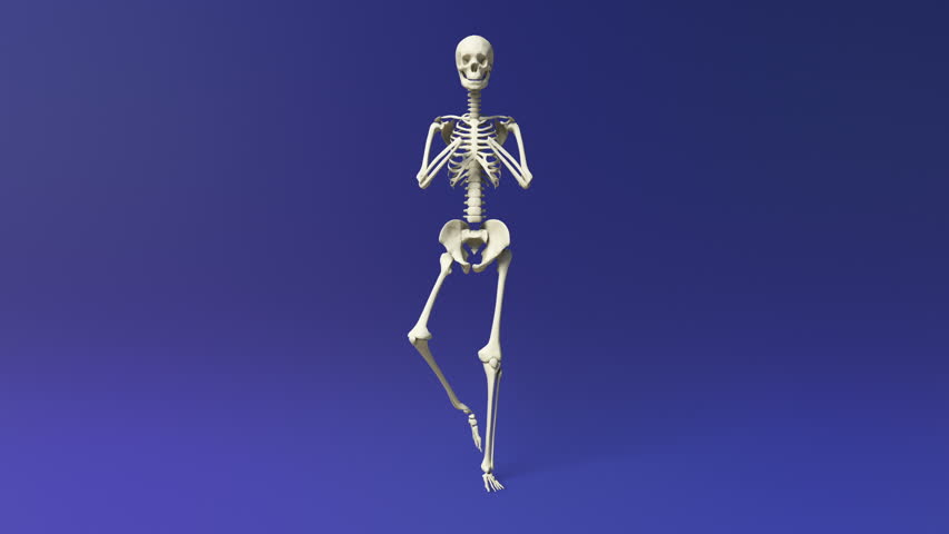 b-skeleton: animation of a human skeleton breakdancing. the adult, Skeleton