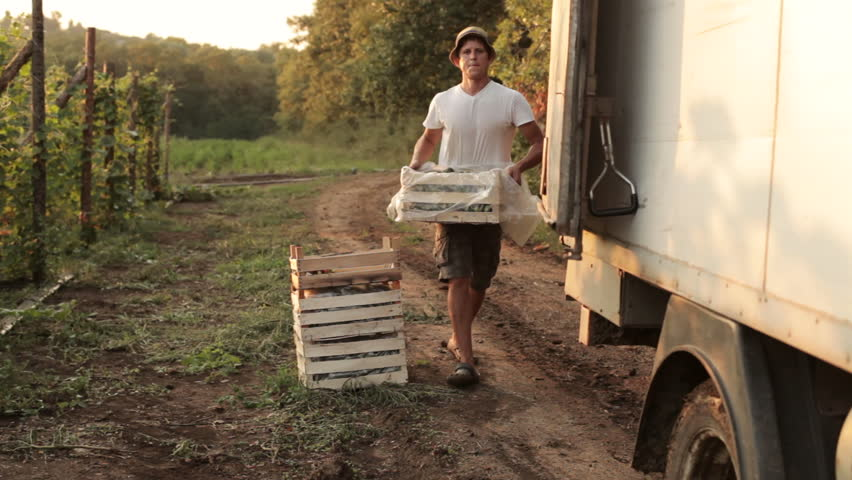 Shot of farmer shipping boxes with vegetables in the truck | Shutterstock HD Video #19246087