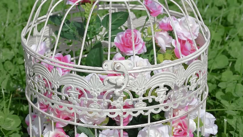 Decorative Artificial Flowers In Vintage Bird Cage Against Green Field Clover Flower Grass With InsectsBeautiful Wedding Birthday Romantic Decor