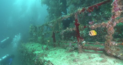 Ocean scenery along rails and approach to wheelhouse of the wreck heavily encrusted in colourful filter feeders, on wreckage, 4K UltraHD, UP35050