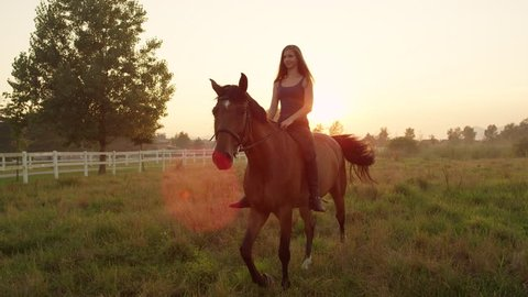 SLOW MOTION, CLOSE UP: Happy young Caucasian blonde girl bareback riding mighty brown horse on vast meadow field on misty morning at magical sunrise. Amazing relaxing ride at golden sunset