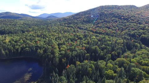 Aerial View of Forest During Fall Season in Mont-Tremblant, Quebec