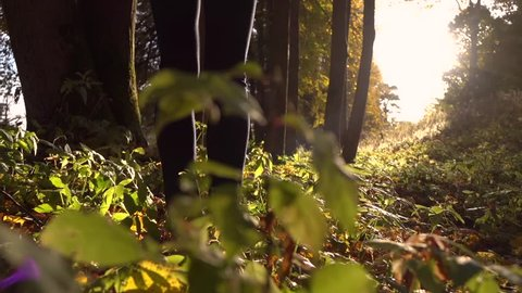 Girl in sneakers walks on fallen autumn leaves in the forest against blazing sun. Slow motion steadicam shot