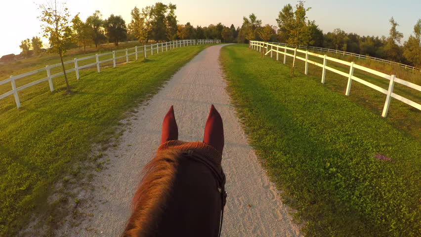 FPV, CLOSE UP: Magical and relaxing evening ride on horse ranch. Horseback riding powerful chestnut stallion into golden setting sun. Beautiful gelding walking on dirty pathway in recreation park | Shutterstock HD Video #20184007