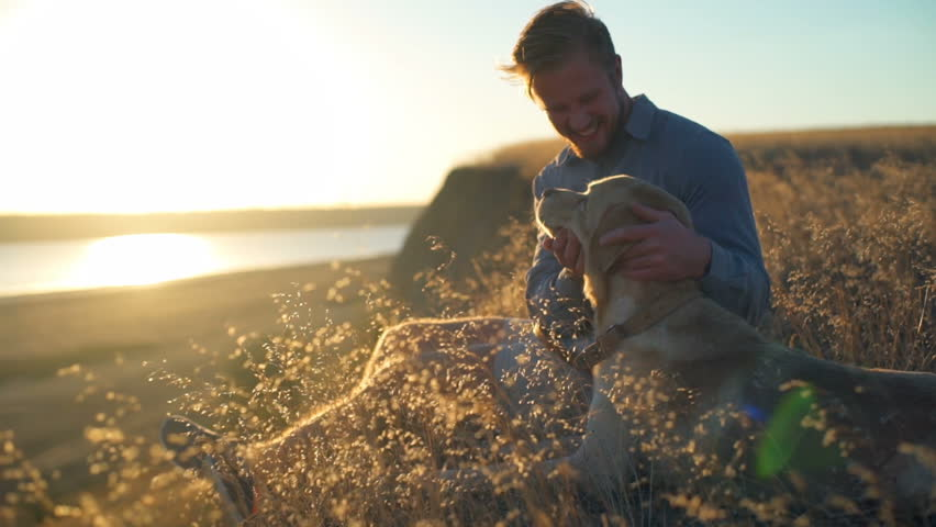 Happy male gently caressing old dog in field on sunset