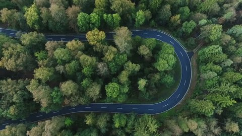Winding road through the forest - aerial view