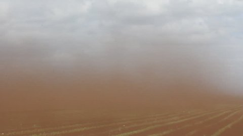 Natural catastrophe. Black Blizzard (dust devil; dust whirl) on agricultural lands. Loss of soil and crops. Everything is drowning in dense stream of dust. Dirt clogs eyes, nostrils, ears and lens