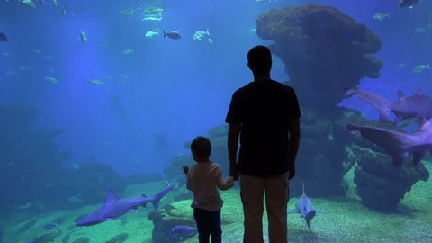 Father and enthusiastic child holding hand and enjoy undersea life at aquarium