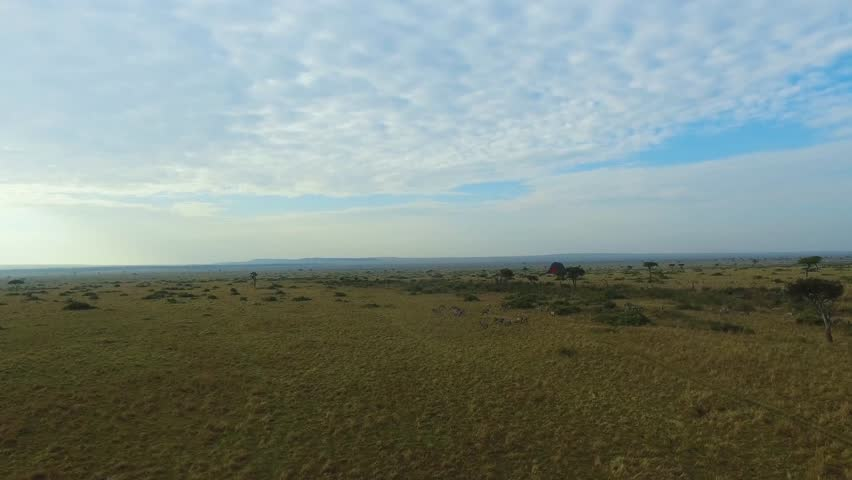 Aerial drone shots of hot air balloons, floating over the Kenyan savanna at sunrise.
