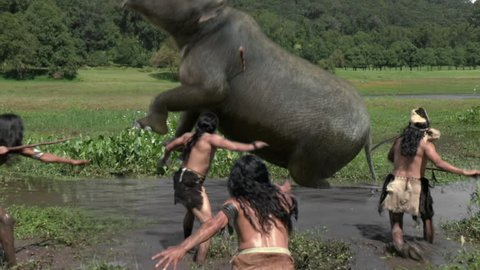 Humans attacks baby mammoth