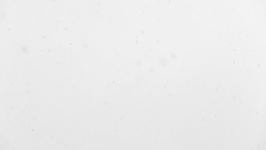 1920x1080 hidef, hdv - Slowly falling snow in large flakes | Shutterstock HD Video #2141837