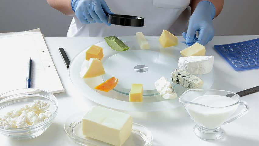 Some kinds of cheeses are carefully inspected in dairy safety laboratory by expert hands in blue latex gloves