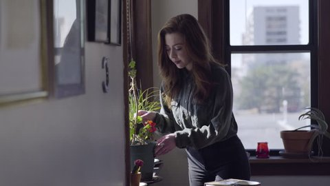 Young Woman Takes Care Of House Plants, Carefully Waters Plants In Her Trendy City Apartment