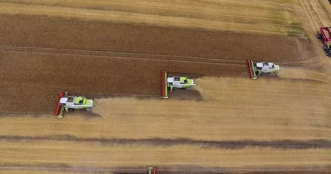 Four combines harvesting lentil field on the Saskatchewan Prairie aerial view