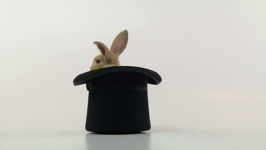 Bunny in a Top Hat, jumps out.