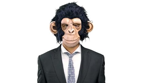Monkey man pointing to the laterals having doubts on isolated white background