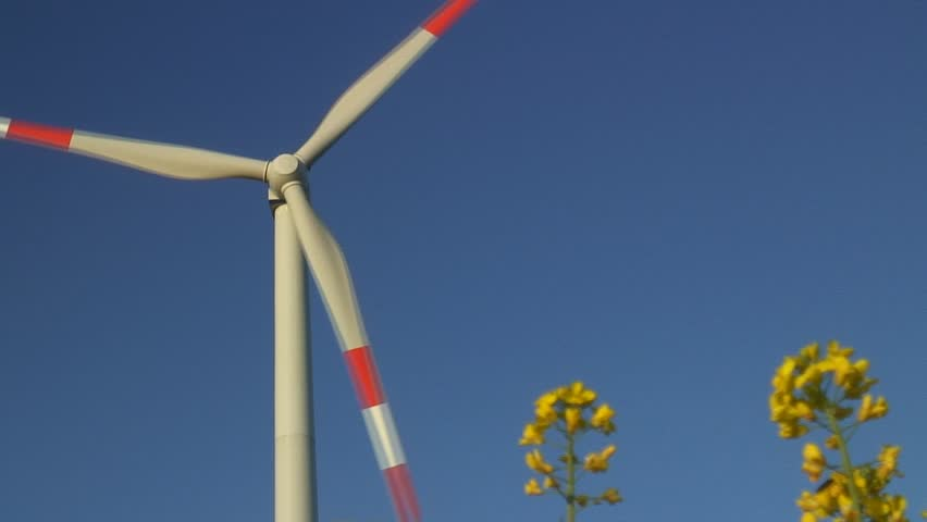 HD 1080i: Rotating wind turbine behind blossoms of oilseed rape