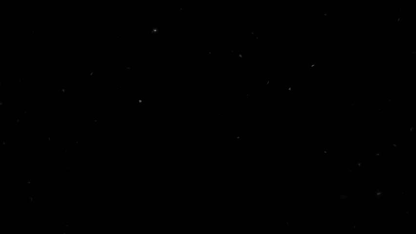High quality motion animation representing snow falling, animated on a black background. #22746187