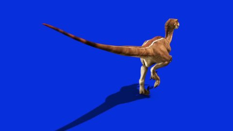 Dinosaurs Velociraptor Run Back Jurassic World Prehistory Blue Screen