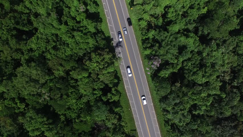 Top View of Road | Shutterstock HD Video #22850167