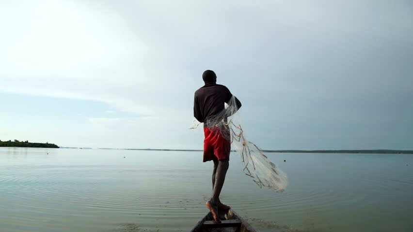An African fisherman casts with skill a wide fishing net on his canoe . About tradition, traditional, fishing, fish,