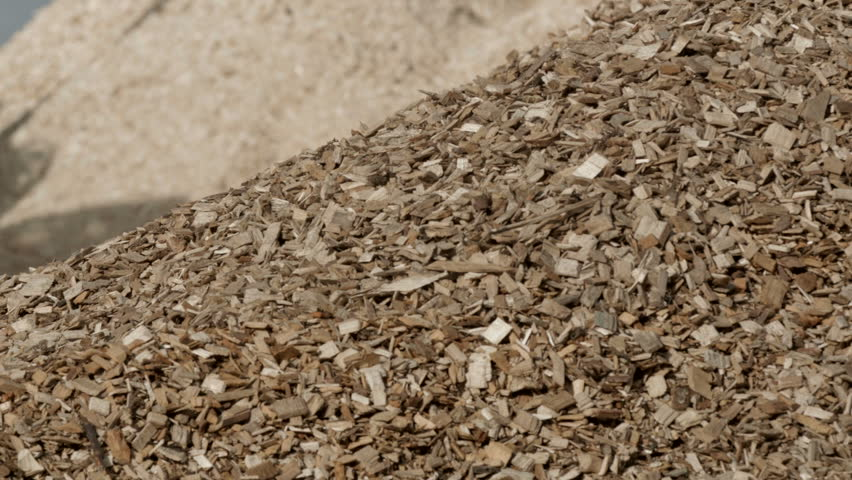 Pile of wood chips to storage for export