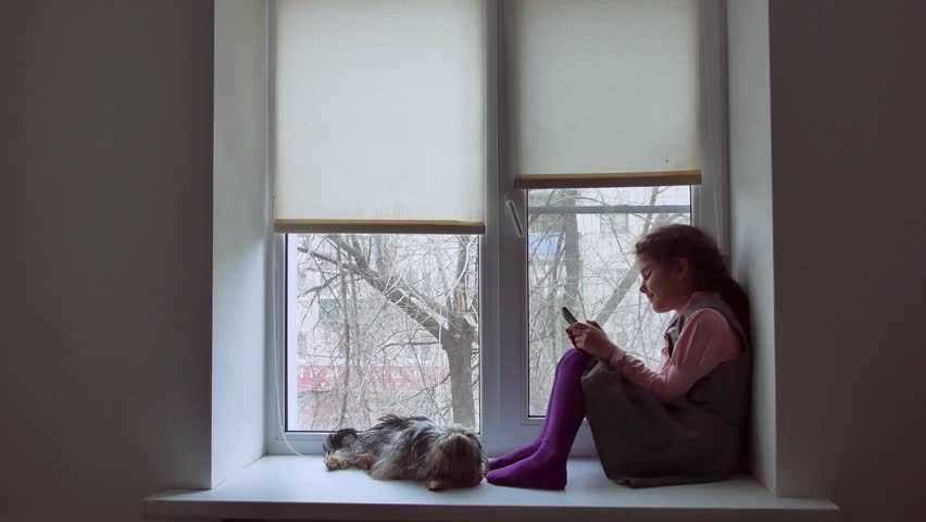 girl teen playing web online the game for pet smartphone and dog sitting on  window sill windowsill