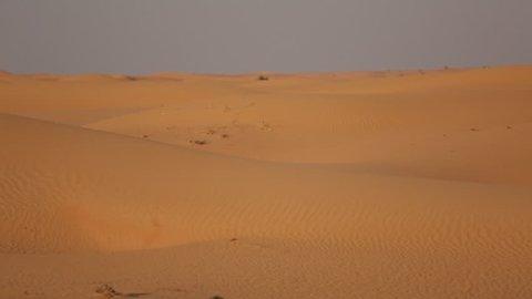 Dubai Desert Sand Dunes