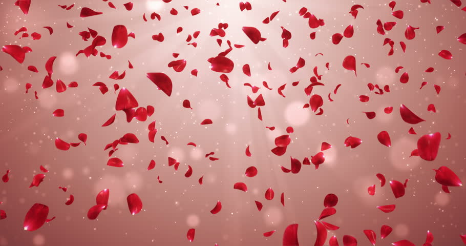 Animation of romantic flying red rose flower petals backdrop. ideal