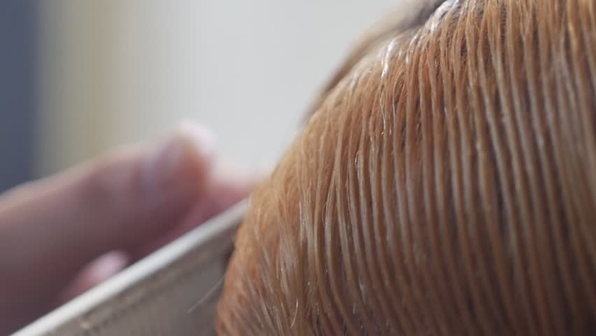 Girl Hair Dye, Hair Coloring In A Beauty Hairdresser Salon ...
