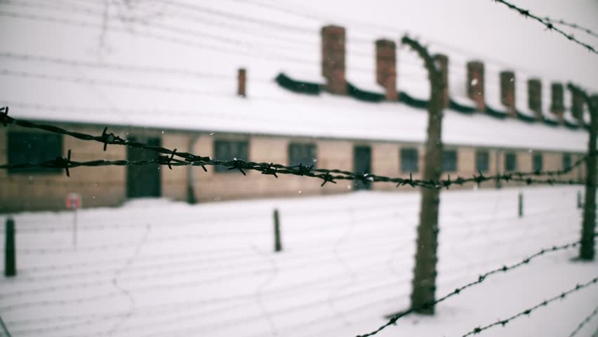 Walk along old rusty barbed wire fence of Auschwitz Birkenau concentration and extermination camp. Brick barracks in falling snow. 4K video