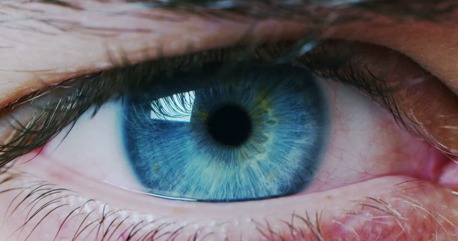 perfect blue eye macro in a sterile environment and perfect vision in resolution  #23655067