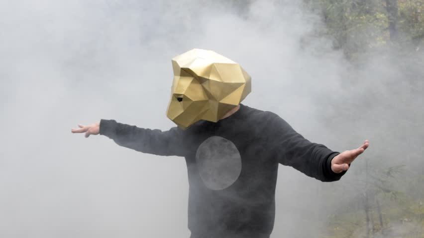 Dancer wearing a low poly lion mask. Slow motion video of a man making dance moves in the woods and getting covered with white smoke.  | Shutterstock HD Video #24022387