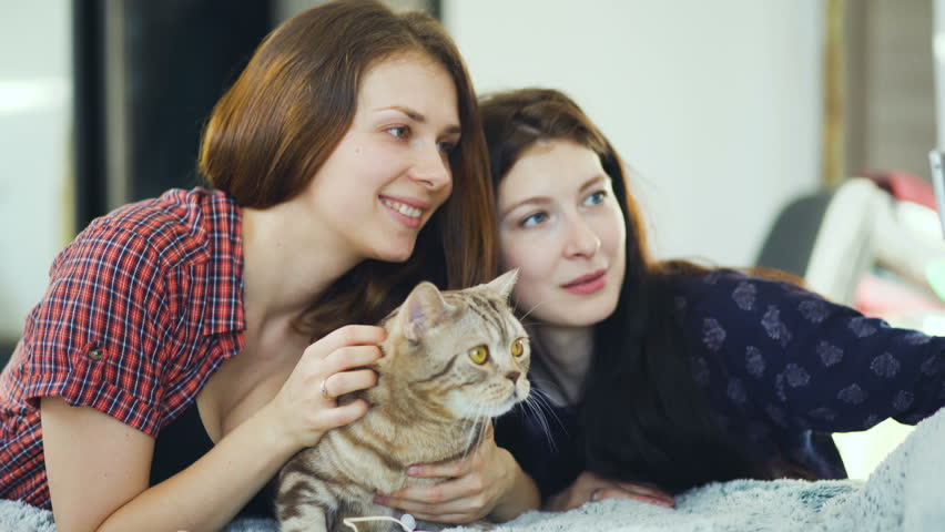 Two happy women friends lying in bed and taking selfie with cat having fun on a bed at home.