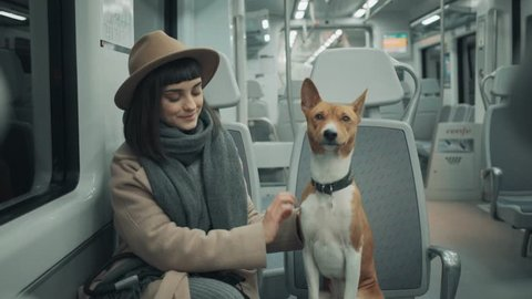 Front close view on brunette young smiling woman travelling by train with clever calm beautiful dog basenji, girl and her pet look through window together