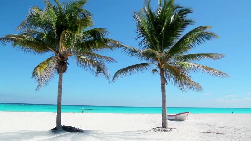 Caribbean Tulum white sand beach with two palm trees and boat