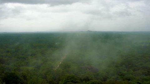 Fog above Sigiriya park