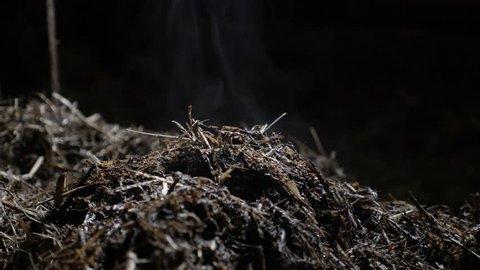 Heat from nitrogen rich soil fertilizer