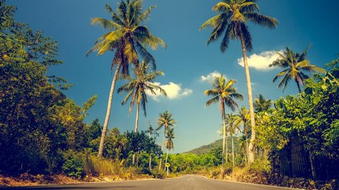Nice asfalt road with palm trees against the blue sky and clouds. Exploring beauty world. Exotic travel background. Slow motion 4K footage